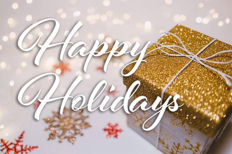 Holiday Festivities Albany